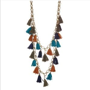 Multicolored Tassel Necklace
